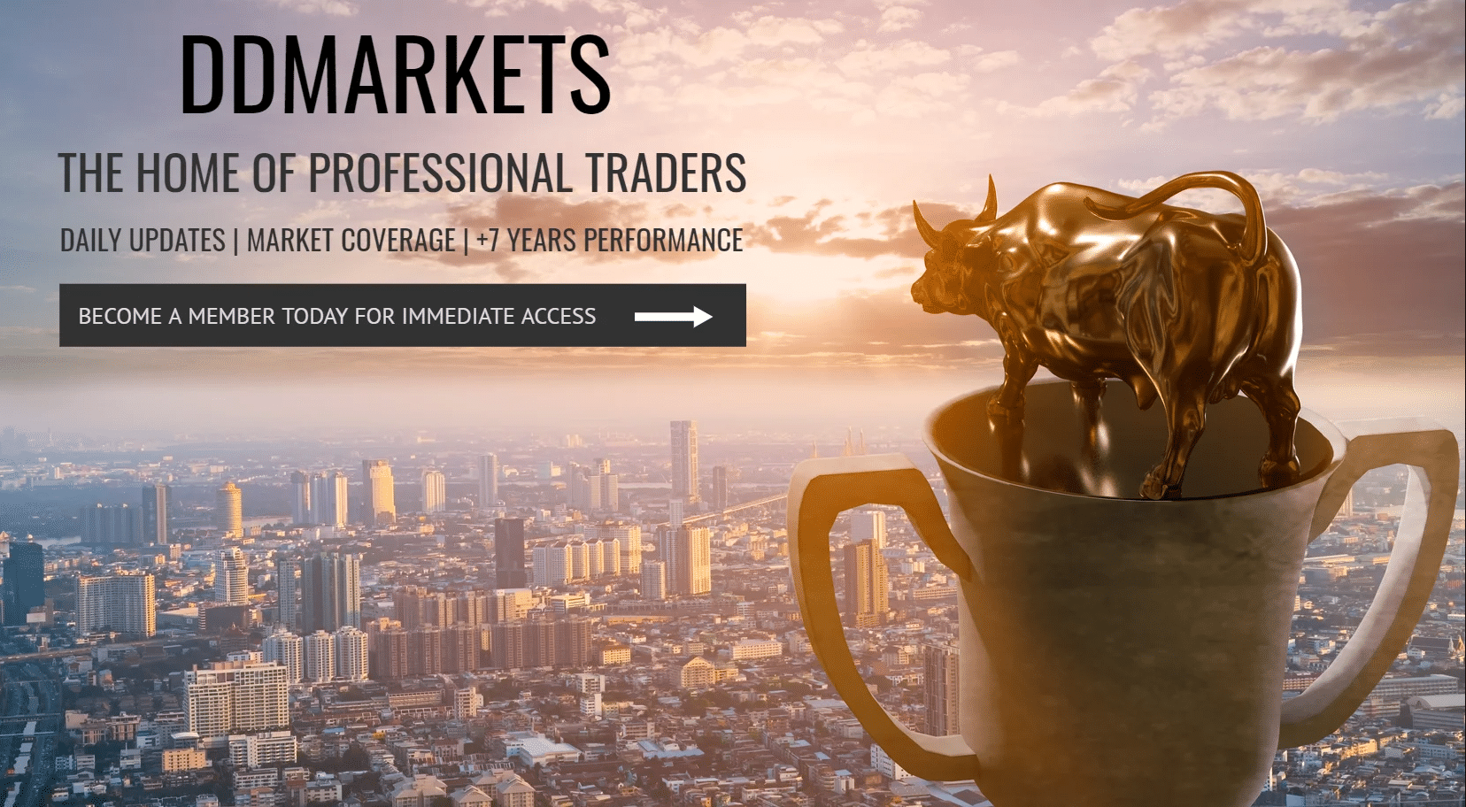 ddmarkets-best-forex-signals-provider-in-the-leading-markets